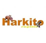 HARKITO REPTILE